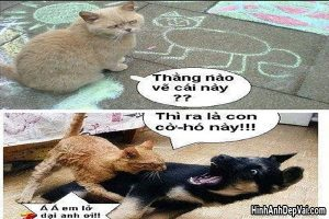 Anh Hai Huoc Vui Cuoi