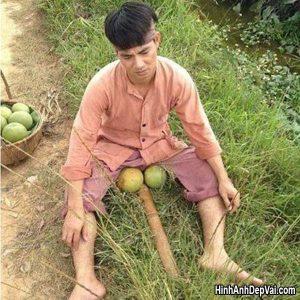 Hinh Anh Hai Huoc Cua Xuan Bac
