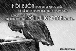 Nhung Anh Buon Dep Nhat Ve Tinh Yeu